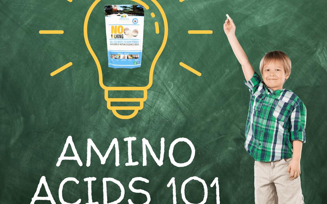 Amino Acids: The Body's Building Blocks